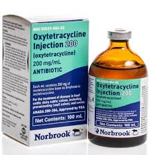 Carprofen Nsaiid Medicine For Arthritis Gout In Dogs And